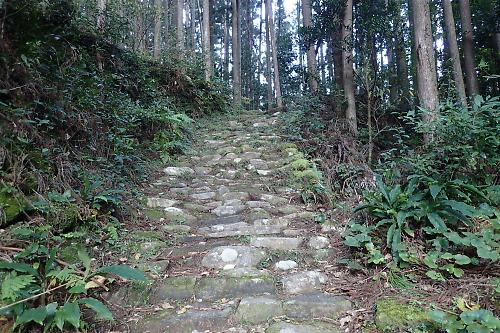 20161104kokumotorigoe05